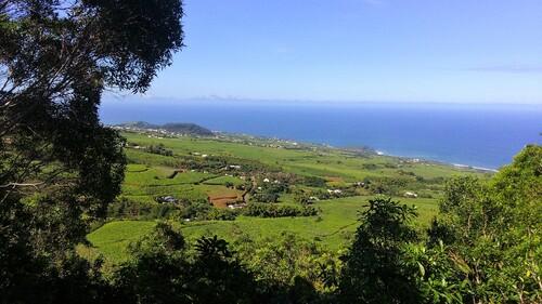 Belle vue vers la Petite Île depuis le Piton de Mont-Vert