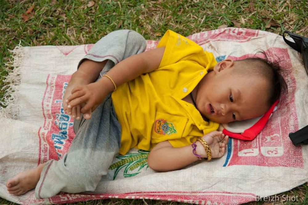 Sukhothaï,maman est en haut, elle cueille le tamarin - Bébé est en bas allongé sur un sac de riz vide