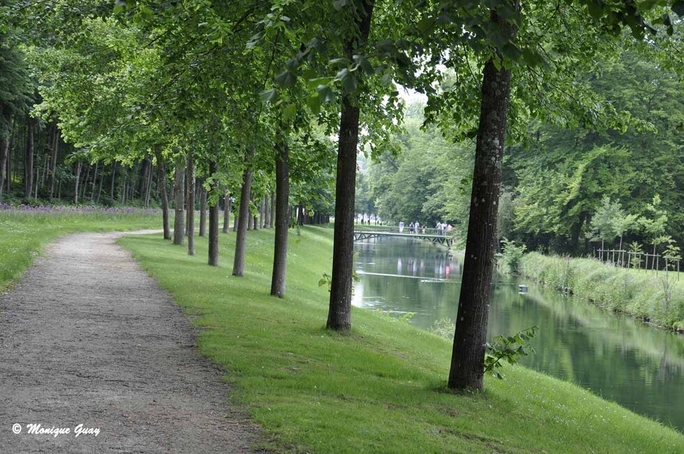 Le long du Bois du Petit Parc