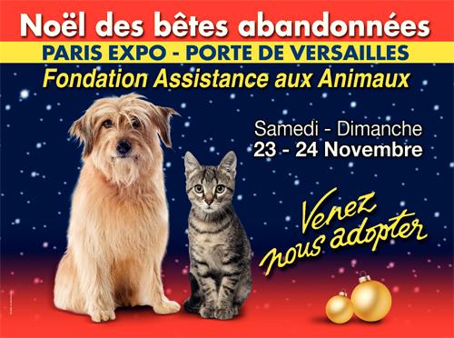 Evènement - Le Noël des bêtes abandonnées