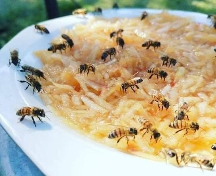Pour aider les abeilles