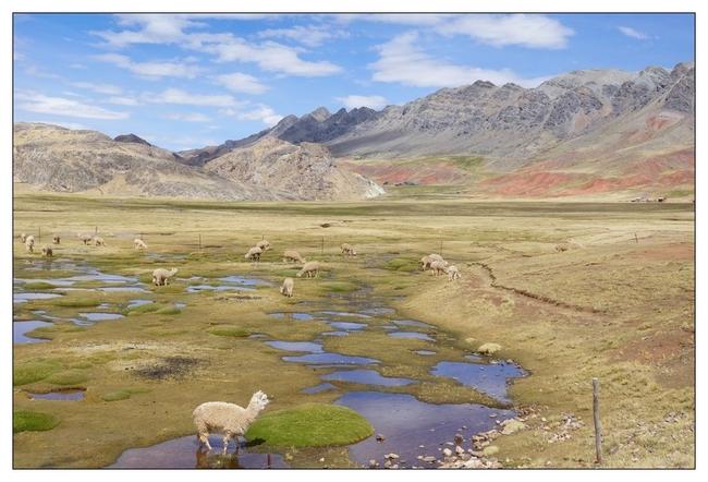 Ayacucho - Huancavelica suite bis 4