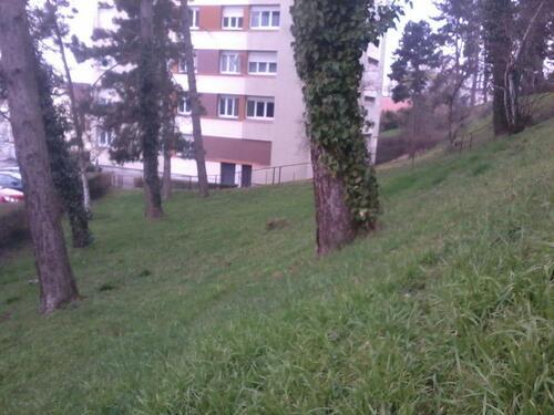 Mon ancien quartier (2)