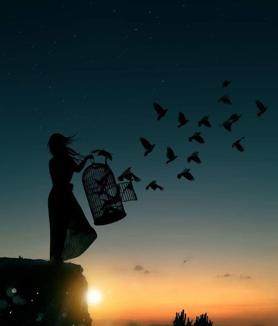 I just want free like a birds..