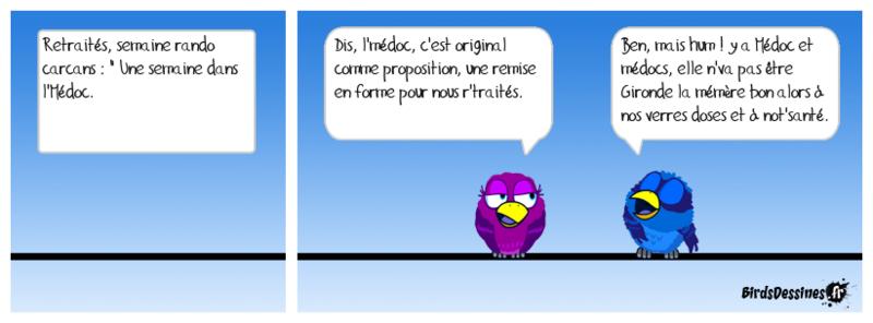 Les petits oiseaux !....