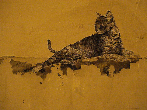 18 - Street art and cat, encore