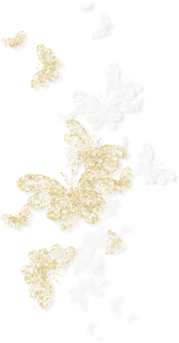 NLD Butterflies sh.png