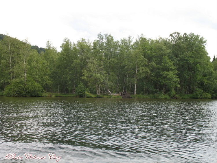 Gérardmer (88) : Le lac