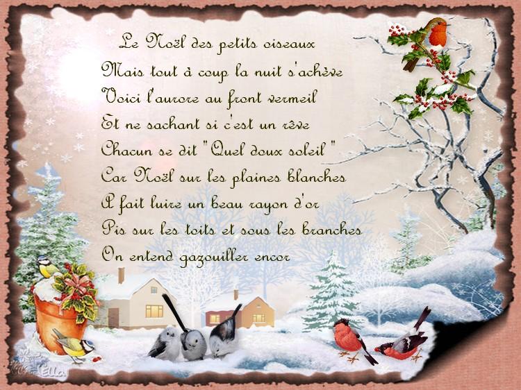 le Noël des petits oiseaux