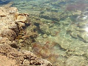 Ibiza 2010 073