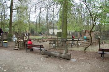 Zoo Osnabruck d50 2012 207