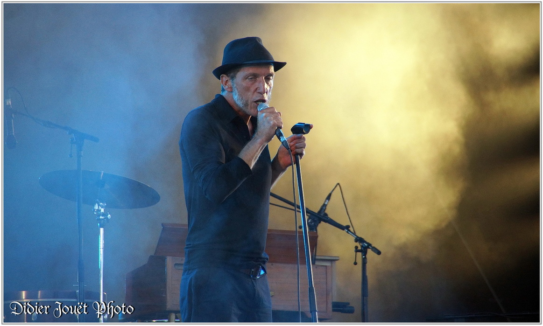 Miossec / Vieilles Charrues 2014