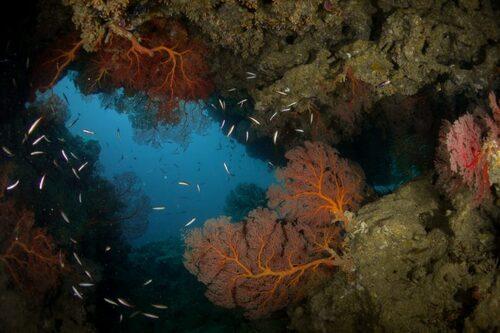 Belle ouverture sur le bleu à Donga Hienga - Hienghène - Nouvelle Calédonie