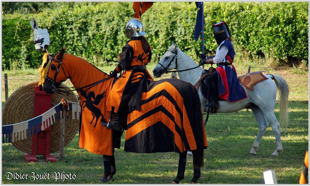 Commequiers (85) - Fête Médiévale 2014 (3)