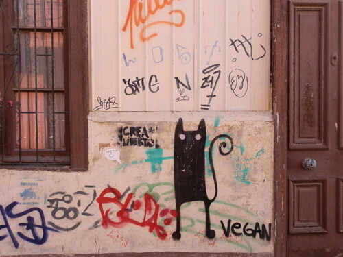 19 - Street art and cats, encore