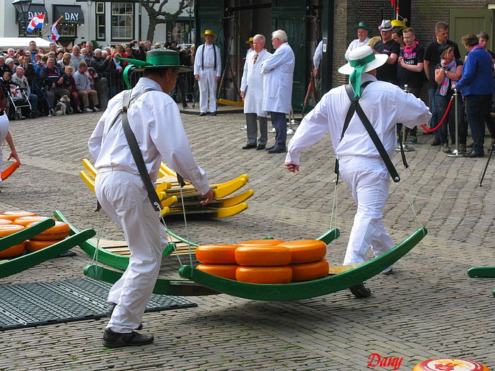 Hollande-Alkmaar-le Gouda 2