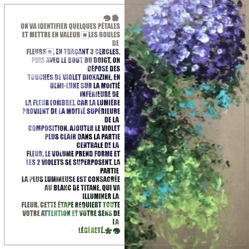 Dessin et peinture - vidéo 3270 : Comment peindre avec les doigts (une fleur d'hortansia ou d'hydrangea) ? - Acrylique ou huile.