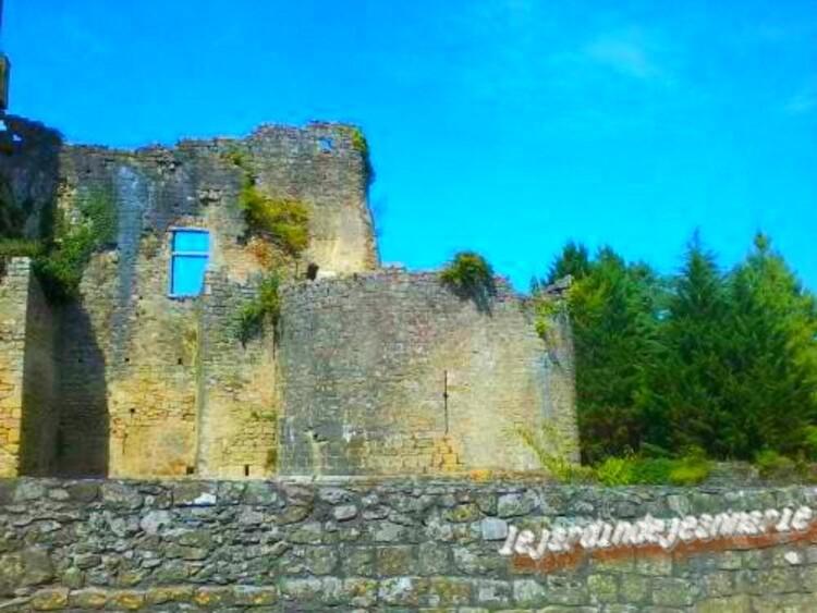 suite du château du pape Clement V a Villandraut (Gironde)
