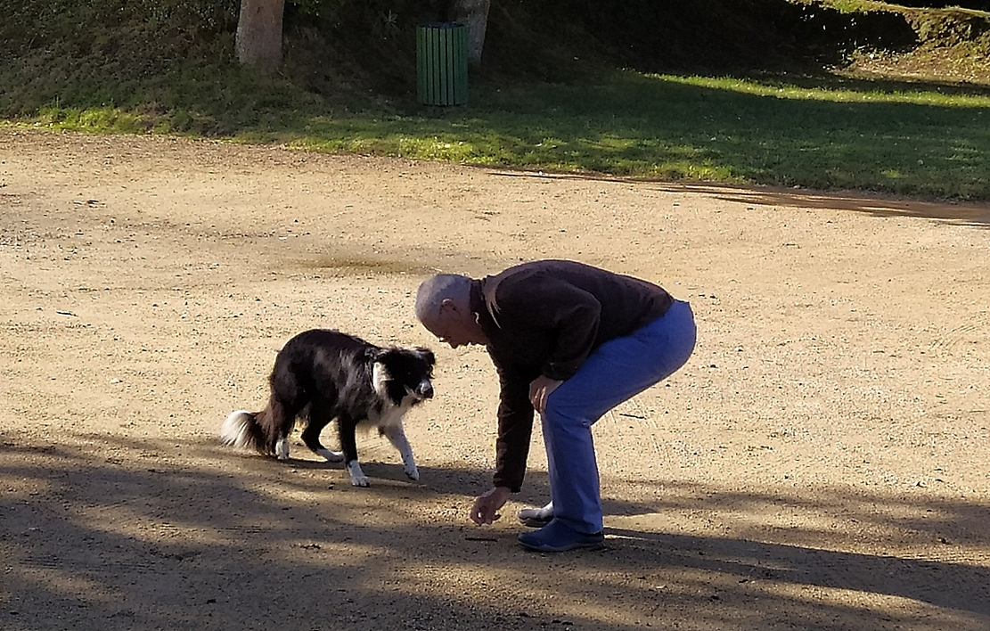 un beau moment avec un chien