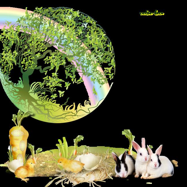 cadeau pour vos créations : mon cluster la terre et l'écologie