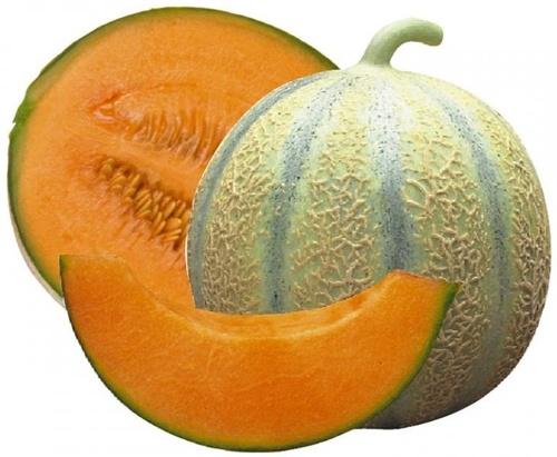MARSEILLE - Mamiekéké vous conte l'histoire des melons de COUCOURDAN ...