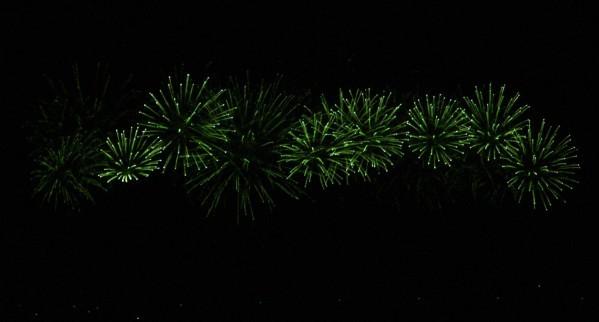 Palmiers de lumière 11916