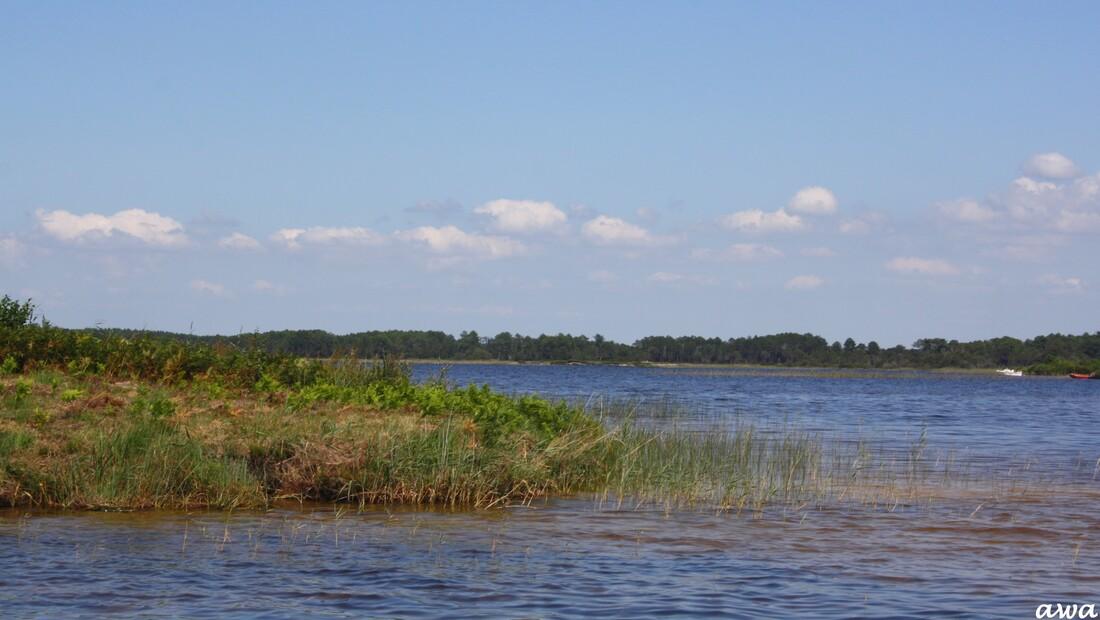 Pour la carte de France de Canelle : Promenade sur le lac de LACANAU