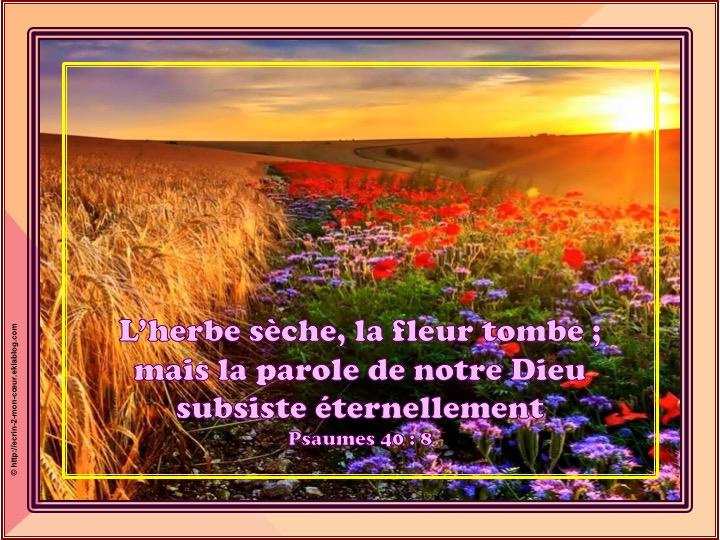 La parole de notre Dieu subsiste éternellement - Psaumes 40 : 8