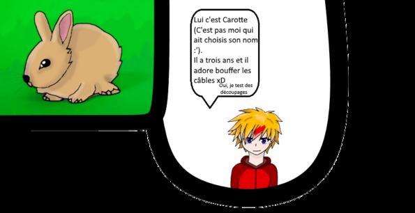 Présentation #3 : Carotte