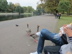semaine à LONDRES