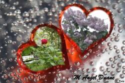 Poétique Love