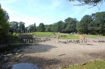 dierenpark emmen d50 044