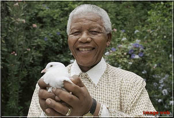 Happy birthday , Mister Mandela .