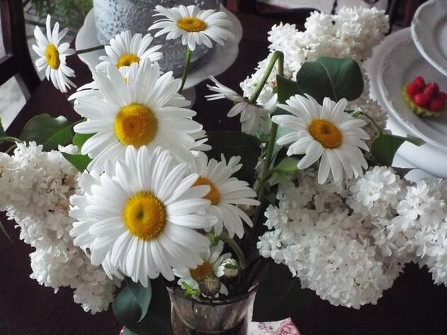 """Bon week end avec cette fleur """"champêtre"""" ......"""