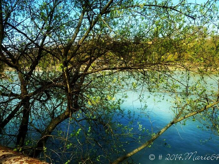 PAU : Petite balade au bord du Gave