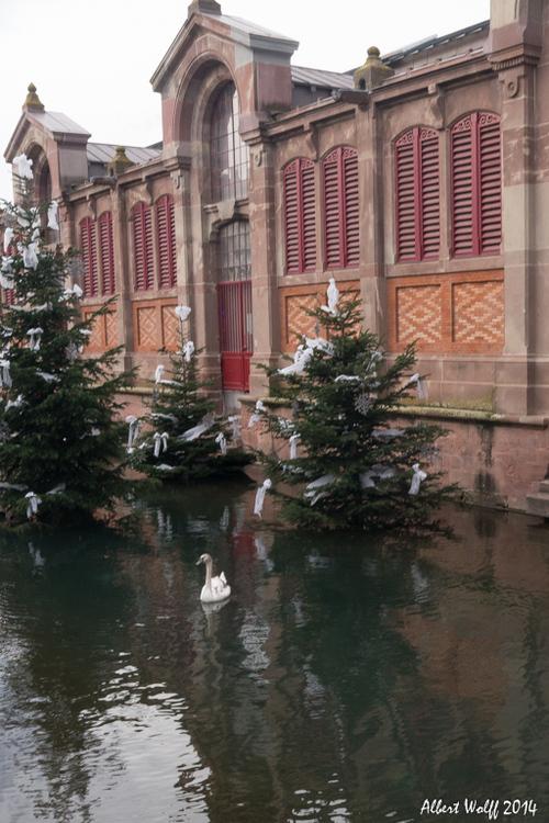 Colmar, un marché de Noël  (1)