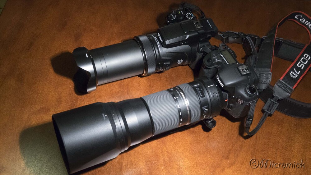 Le zoom fabuleux du Nikon Coolpix P1000
