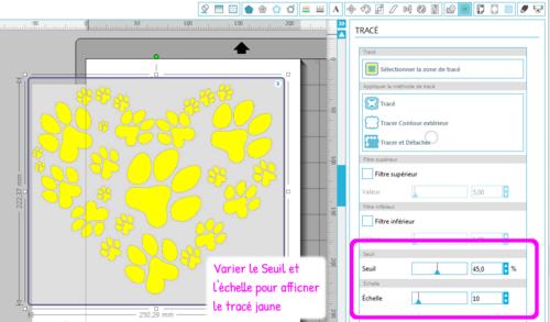 Mon tuto Express vectoriser une image avec Designer V3