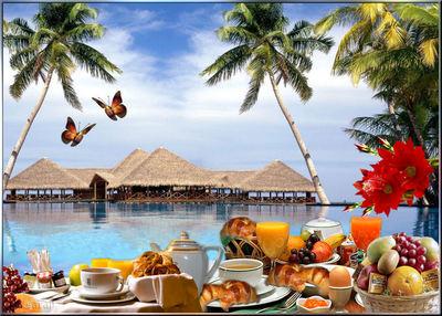 Blog de lisezmoi :Hello! Bienvenue sur mon blog!, petit-déjeuner à  Bora-Bora