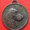 Médaille du Chien  19 avril 2014 Bois de Heyrieux Valencin face