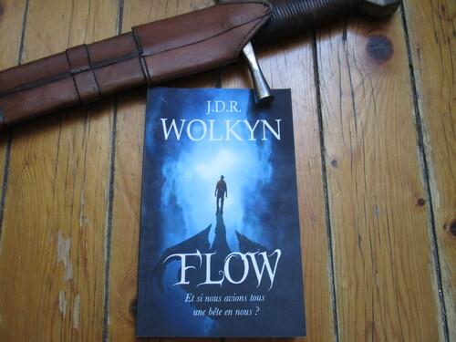 """J'ai lu : """"Flow"""" de J.D.R Wolkyn"""