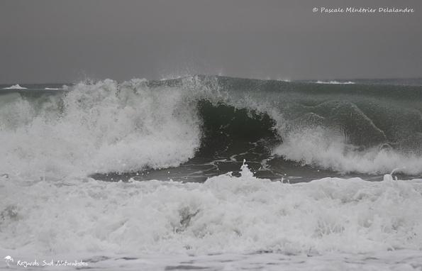 Quand la mer Méditerranée s'agite...