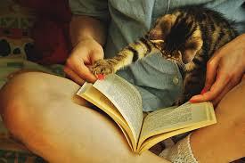 Tag #7 | Les habitudes de lecture
