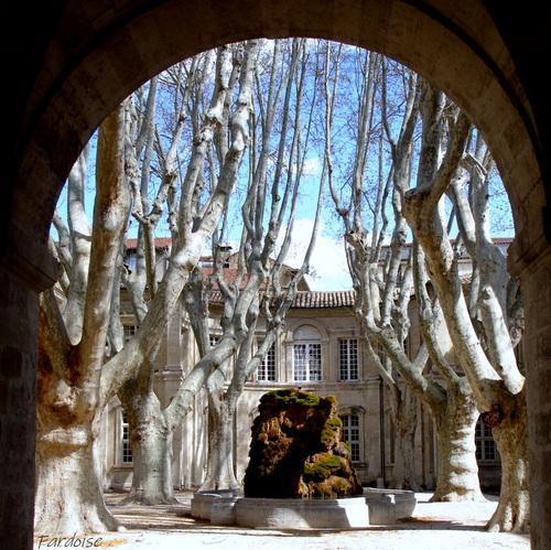 Le cloître Saint Louis à Avignon