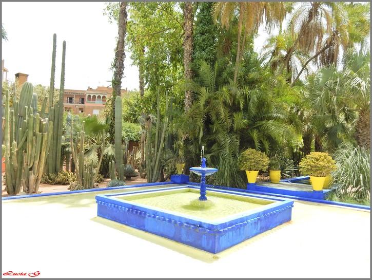 Jardin de Majorelle.....
