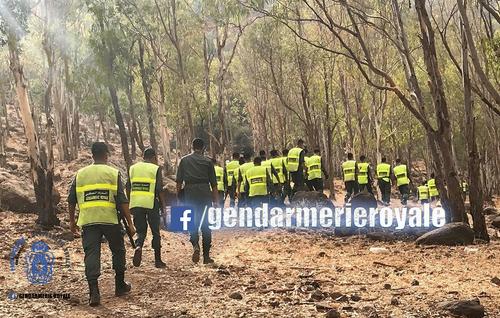 Immigration clandestine : Arrestation de deux passeurs à Nador