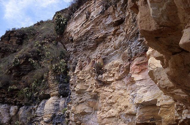 Momies - Pérou