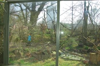 zoo cologne d50 2012 050