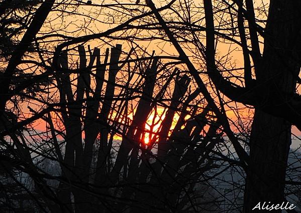 Soleil levant 01 02 2010 2