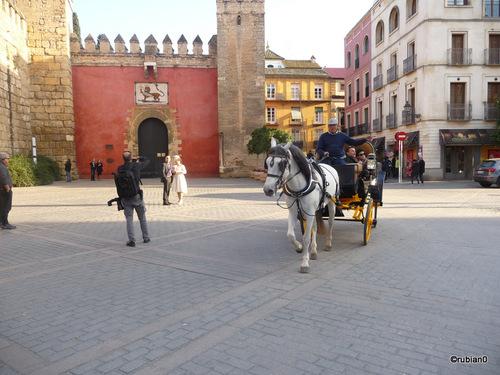 l'entrée de l'Alcázar
